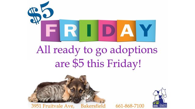 Kern County Animal Services offers $5 adoptions today