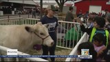Thousands of local students expected at 'Farm Day in the City'